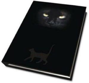 Магический дневник. Глаза Кошки (Cat`s eyes)