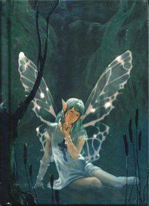 Магический дневник «Кельтская фея» фото