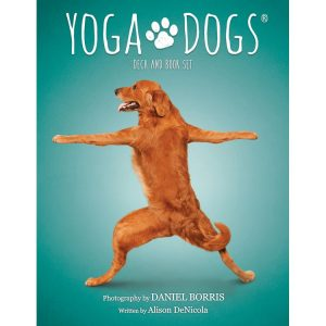 Yoga Dogs Challenges cards. Карты Йога собак