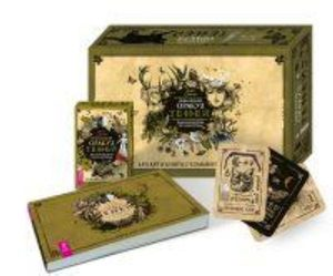 Викканский Оракул Теней. Заклинания Луны, Ритуалы Солнца брошюра + 48 карт в подарочной упаковке