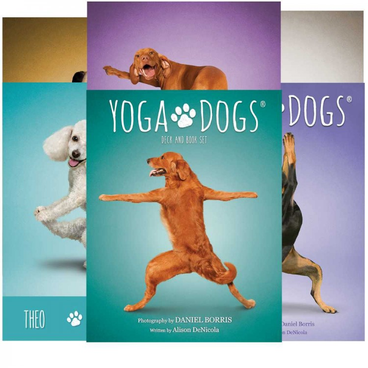 Yoga Dogs Challenges cards. Карты Йога собак %% карты 1