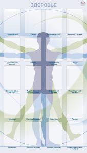 Матрица для работы с картами Здоровье